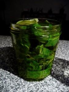 Basilic confit a l huile d olive 4