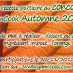Concours_YannCook_automne_2012